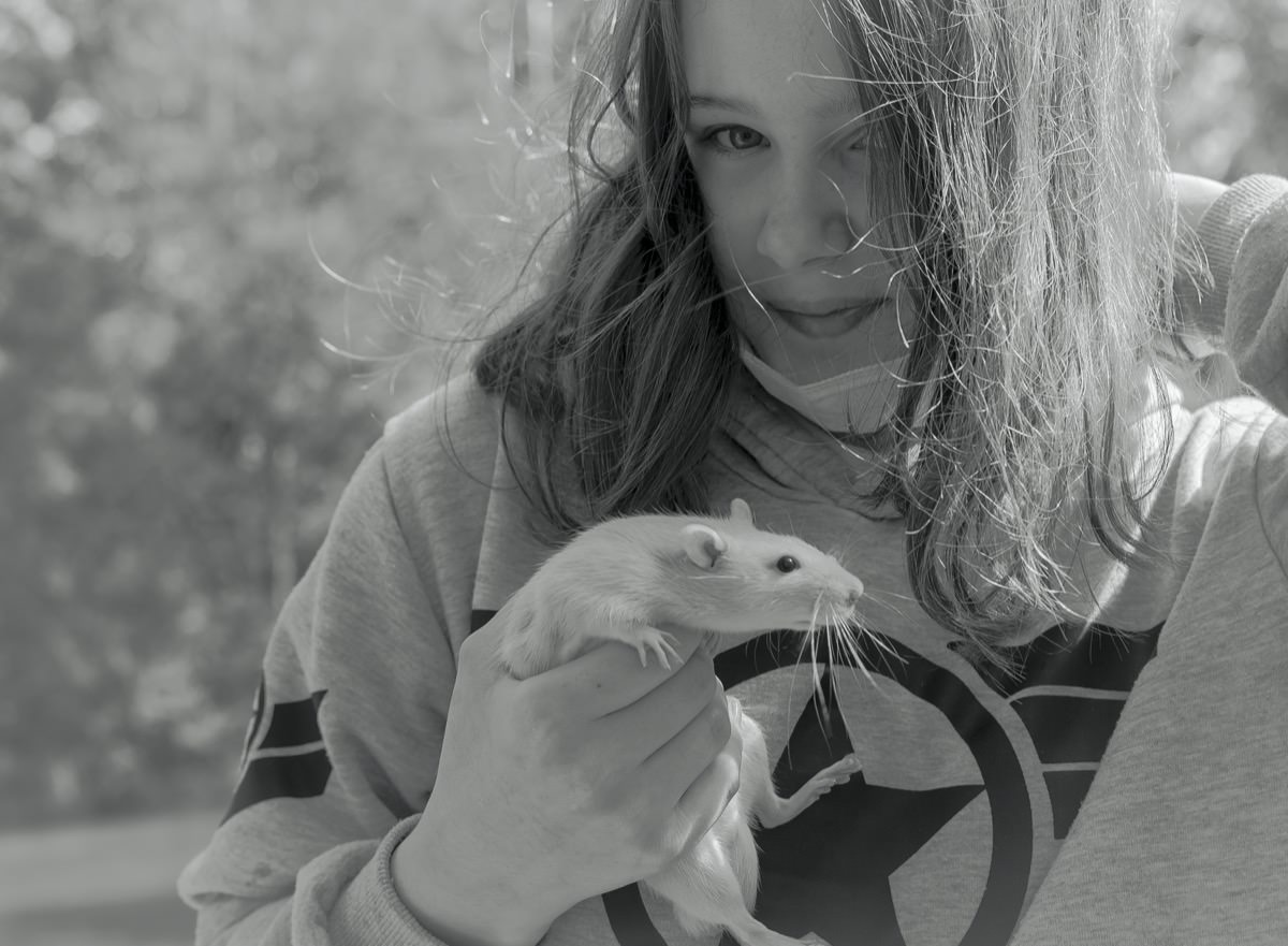 Young Girl And Rat